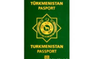 Как гражданину Туркмении получить гражданство РФ в 2020 году