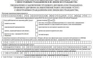 Образец заполнения формы 19 ФМС