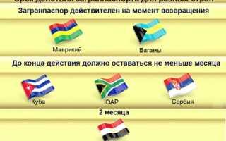 Способы проверки загранпаспорта гражданина РФ на действительность