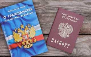 Двойное гражданство в России: кому разрешено в 2020 году