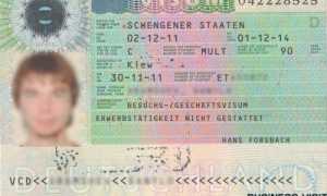 Виза для поиска работы в Германии