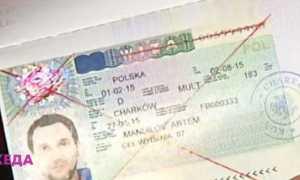 Бланк и образец заявления на аннуляцию визы для скачивания