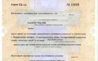 Вкладыш о гражданстве РФ ребенка для загранпаспорта: нужен ли