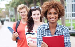 Как иностранцам получить учебную визу в Россию