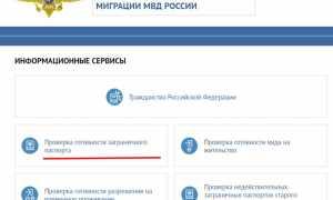 Как легко проверить готовность паспорта гражданина РФ