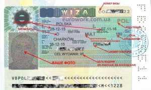 Во сколько обойдется виза в Польшу?