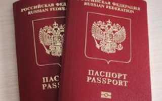 Дипломатический паспорт гражданина РФ: что дает, как получить