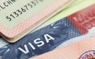 Как оформить визу в Эстонию самостоятельно?