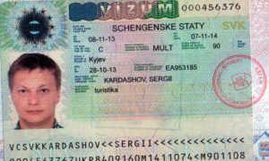 Многократная шенгенская виза в Германию