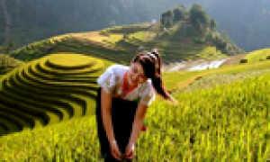 Уровень жизни во Вьетнаме в 2020 году