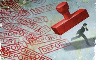 Основания для депортации иностранных граждан из России в 2020