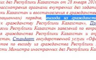 Как сделать отказ от гражданства Казахстана в 2020 году
