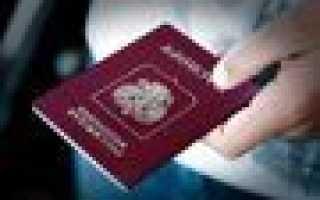 ВНЖ для высококвалифицированных специалистов: документы