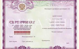 Гражданство РФ для носителей русского языка в 2020 году