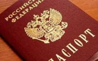 Как легко получить паспорт через госуслуги в РФ